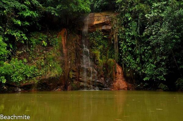 อุทยานทามานทาเสกTaman Tasek บรูไน
