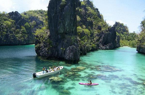 เกาะดอนซอล Donsol ฟิลิปปินส์
