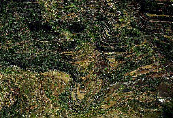 นาข้าว Banaue Rice Terraces ฟิลิปปินส์